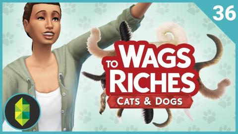 Wags to Riches - Part 36 (Sims 4 Cats & Dogs)