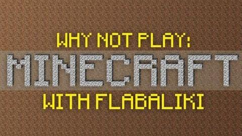 Why Not Play Minecraft - The Wonderous Adventure!
