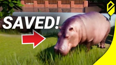 We're back, and no Hippos will be harmed! (Planet Zoo - Part 2)