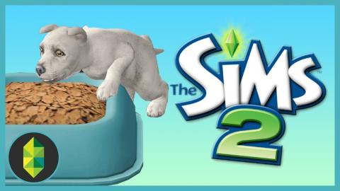 We have a Kitten and a Puppy (Sims 2)
