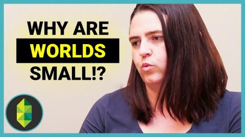 Why are the Worlds So Small? - Q&A with Lyndsay Pearson, General Manager of The Sims