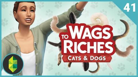 Wags to Riches - Part 41 (Sims 4 Cats & Dogs)