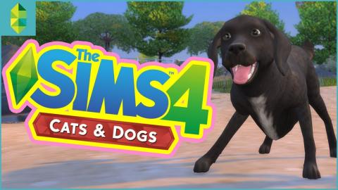 The Sims 4 Cats & Dogs Gameplay