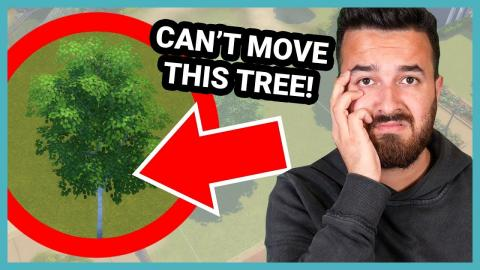 I have to build a house in The Sims, but I can't move this tree...